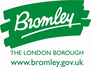 Bromley and reflective practice